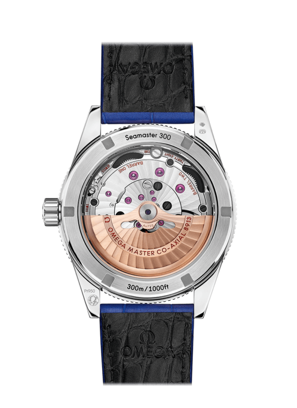 omega-seamaster-seamaster-300-omega-co-axial-master-chronometer-41-mm-23493412199002-l